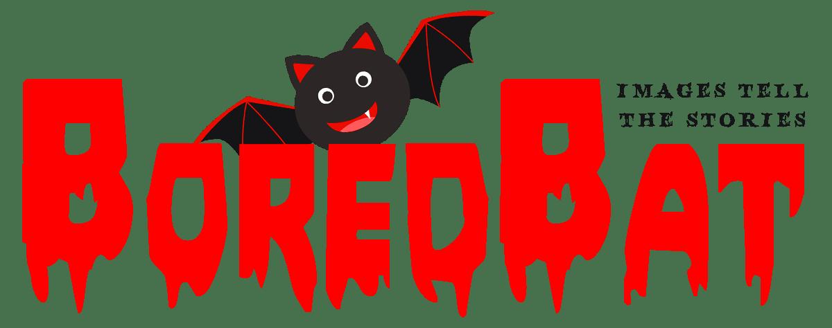 Bored Bat